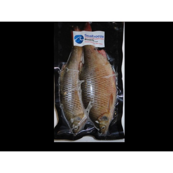 "Roach large (2 per packet 6-8"")"