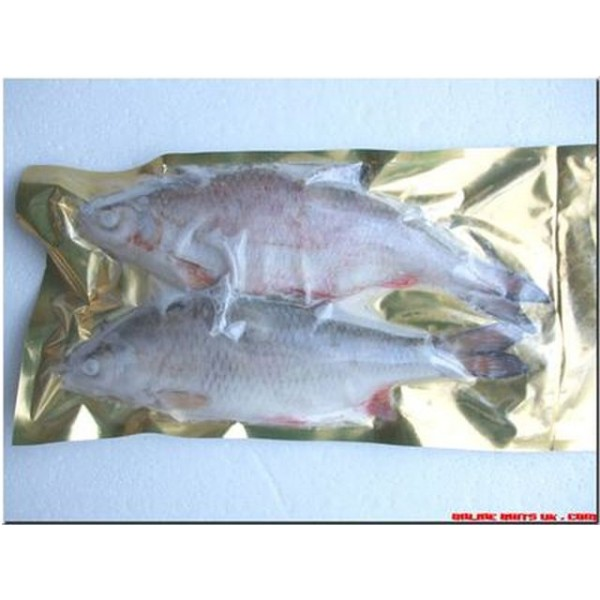 "Roach XL (2 per packet 9-12"")"