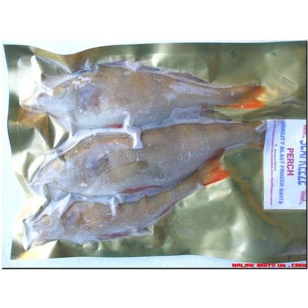 Perch medium (3-4 per pk)