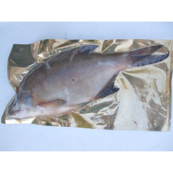 Bream XL 1 per packet (over 11 inches in length)