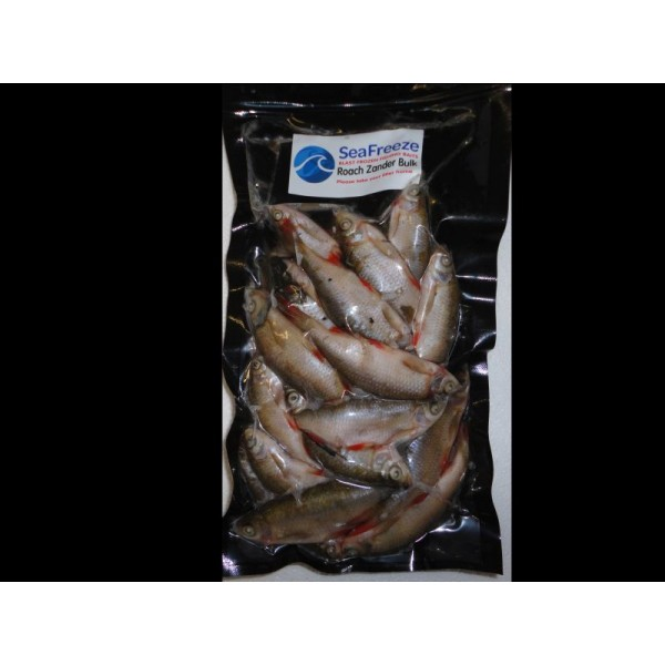 Roach zander Bulk Pack (15-20 per packet 2-3 inches)
